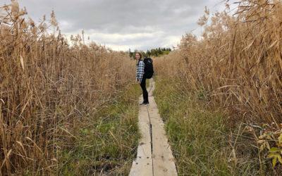 Pyhän Olavin Merireitti: pyhiinvaellusreitistö Turusta Trondheimiin